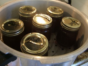 Canning broth made from veggie scraps
